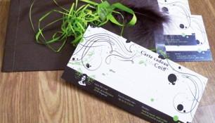 elfe coiff-carte cadeau-graphisme chimere